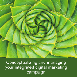Conceptualizing and managing your integrated digital marketing campaign
